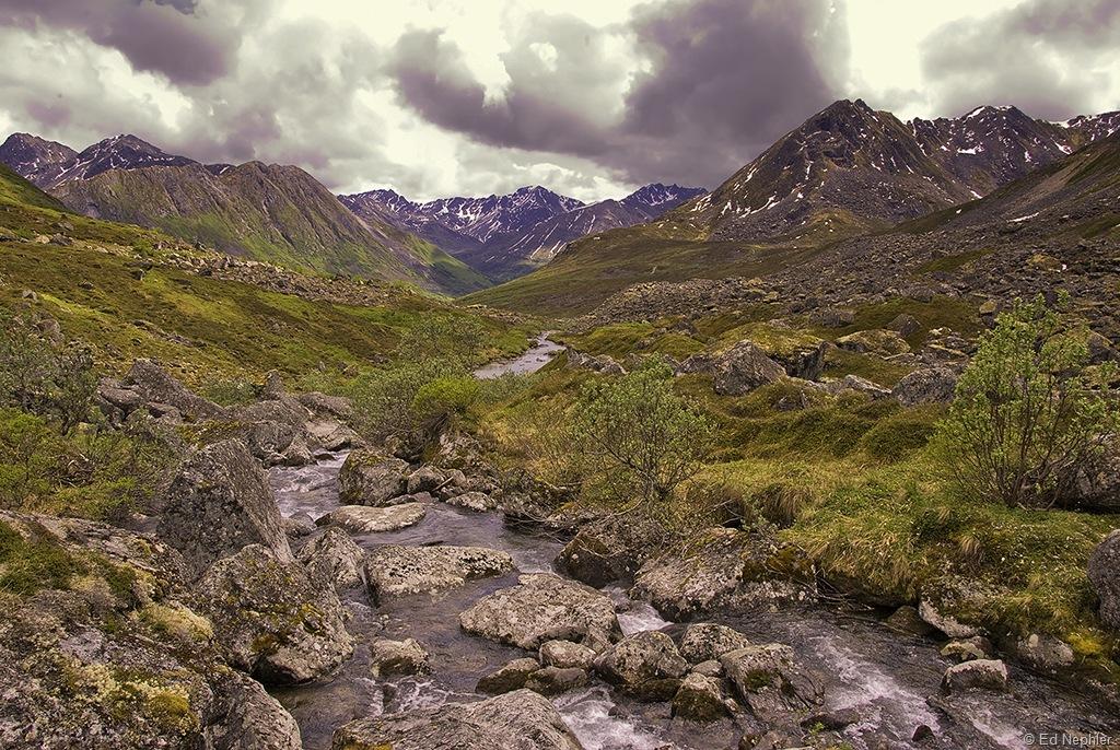 Fairangel Creek 061810.01.1024