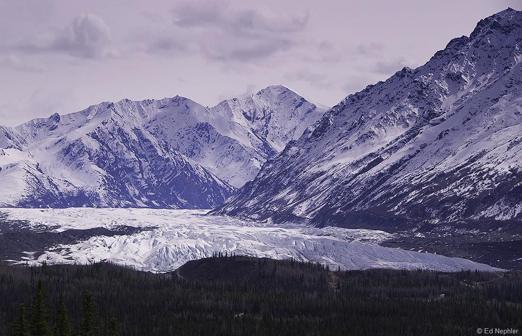 Matanuska Glacier 051310.01.1024