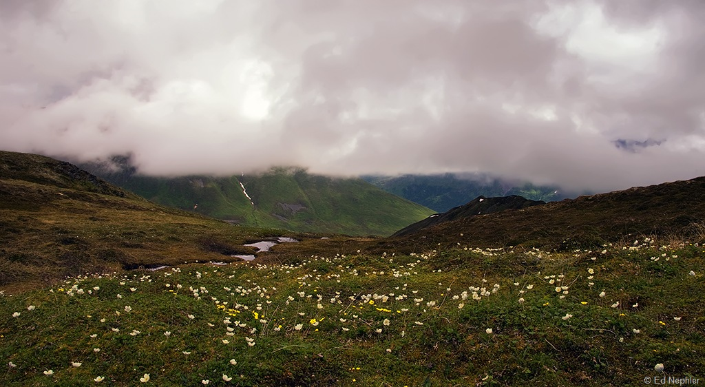 Hike Views 062510.11.1024