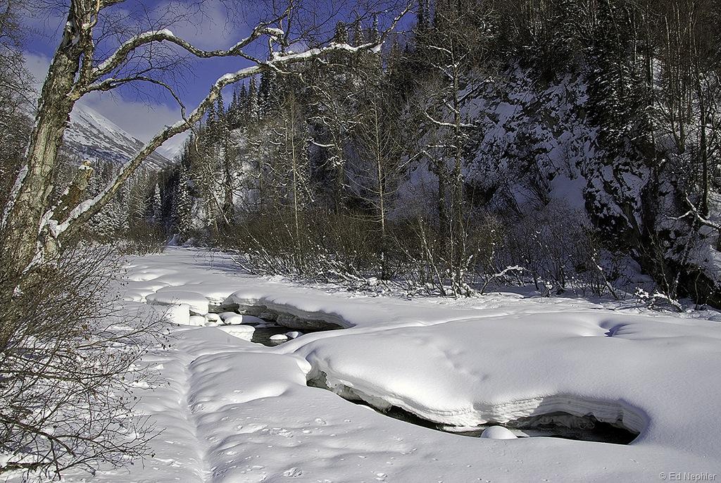 Little Susitna River 031210.01.1024
