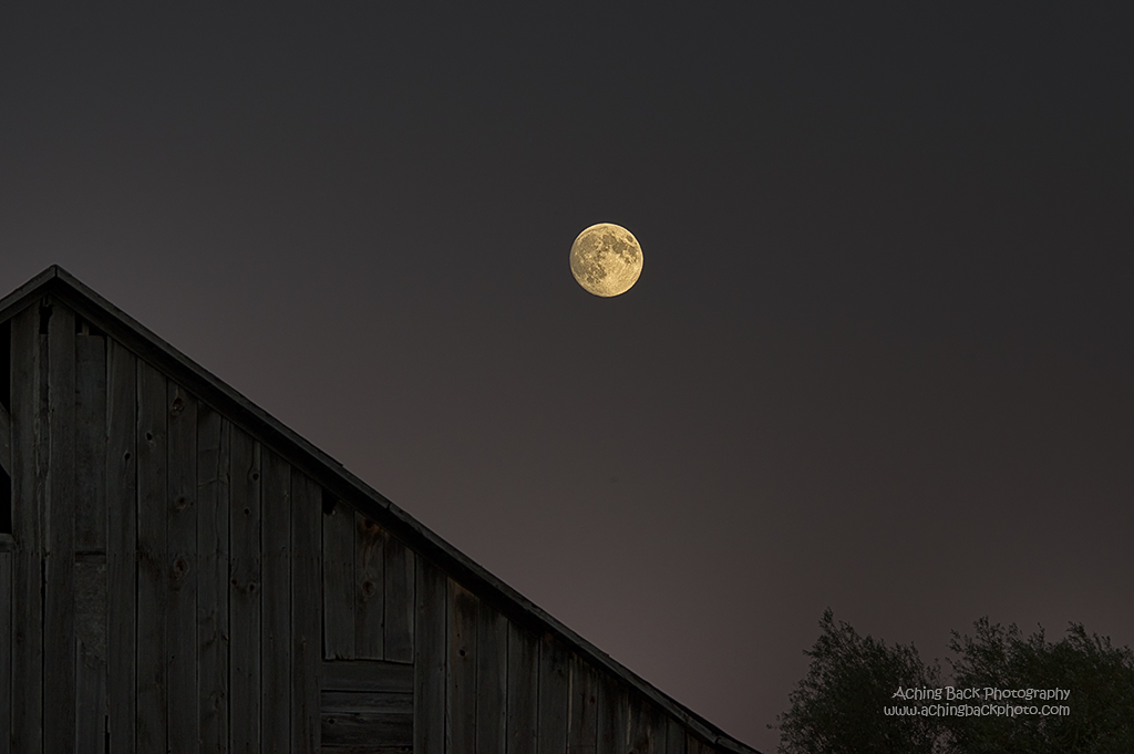 Harvest Super Moon 090714.02.1024