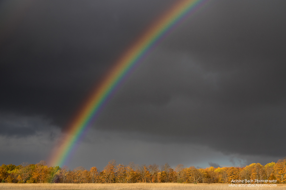 Rainbow 102515.02.640